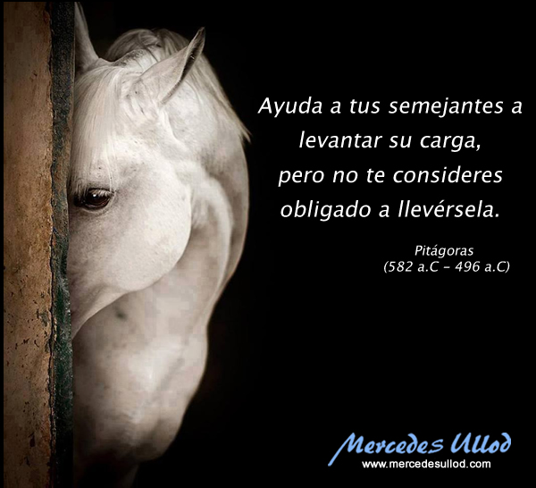 mercedes_ullod_frases
